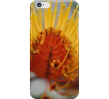 Golden Grevillea, Silky Oak. iPhone Case/Skin
