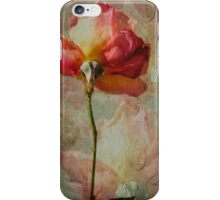 Rosy Rosy iPhone Case/Skin