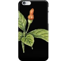 Chilly plant 1- orange fruits iPhone Case/Skin