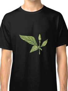 Chilly plant- green fruits Classic T-Shirt