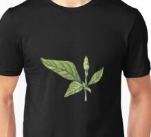 Chilly plant- green fruits Unisex T-Shirt