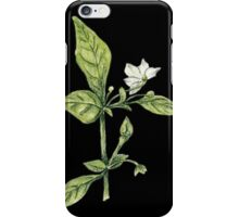 Chilly plant- flowers iPhone Case/Skin