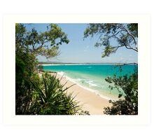 Luscious Little Cove : Bush to Beach Art Print