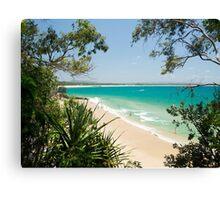 Luscious Little Cove : Bush to Beach Canvas Print