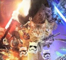 The purr awakens Sticker