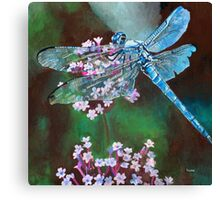 Blue Dragonfly Resting On Wild Garlic Canvas Print