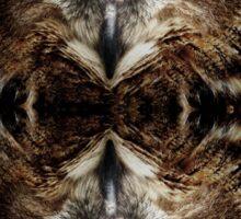 owl reflexion nature wild  animal eagle owl  Sticker