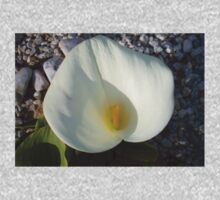 Overhead View of A White Calla Lily Against Pebbles One Piece - Short Sleeve