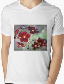 Primrose Mens V-Neck T-Shirt