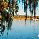 December Boating by TJ Baccari Photography