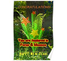 NOT FOR SALE - Featured Banner For Ferns & Mosses Poster
