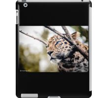 Love Panther IV iPad Case/Skin