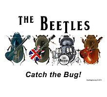 The Beetles Photographic Print