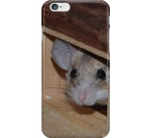 Curious Mousing iPhone Case/Skin
