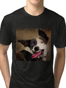 WARNING: OBAMA'S COMING FOR YOUR CHEW TOYS Tri-blend T-Shirt