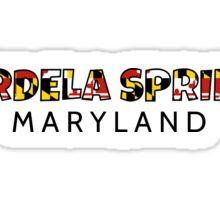 Mardela Springs Maryland flag word art Sticker