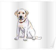 dog #3 Poster