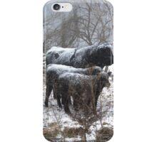 Snow Herd iPhone Case/Skin