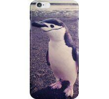 Bird Beach Bum iPhone Case/Skin