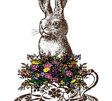 Rabbit in a Teacup by EclecticAtHeART