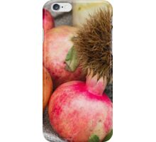 pomegranate and curly chestnut iPhone Case/Skin