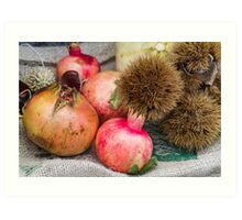pomegranate and curly chestnut Art Print