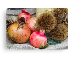 pomegranate and curly chestnut Canvas Print