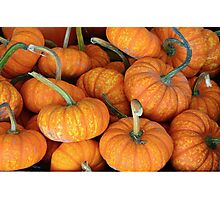 Mini pumpkins Photographic Print