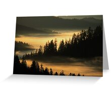 First Light at Indian Valley - Suislaw National Forest Greeting Card