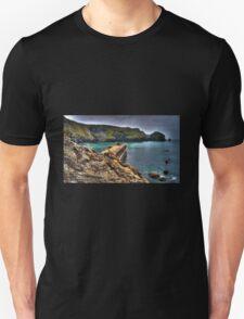 Mullion Cove T-Shirt