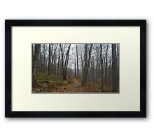 Trail Among the Catskill Mountains New York Framed Print