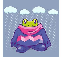 Winter Frogs Photographic Print