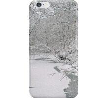 Beautiful Winter iPhone Case/Skin