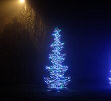 Christmas Tree by Artur Mroszczyk