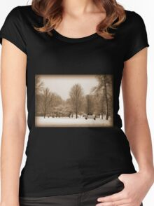 A Winter's Scene Women's Fitted Scoop T-Shirt