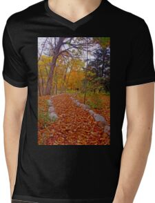 Autumn Nature Walk Mens V-Neck T-Shirt