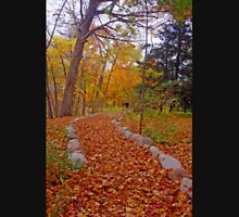 Autumn Nature Walk Unisex T-Shirt