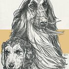 Afghan Hound, Father & Son by BarbBarcikKeith