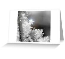 glisten Greeting Card
