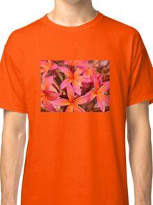 Red Frangipani #2  Classic T-Shirt