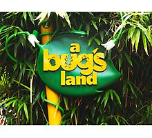 A BUGS LAND Photographic Print