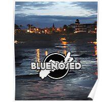 Bluenosed Poster