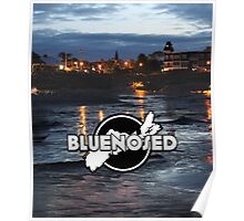 Bluenosed Poster