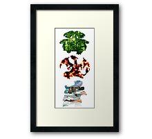The evolved starters (Kanto) Framed Print