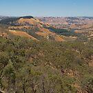 Murchison's Gap, Victoria, Australia by Pauline Tims