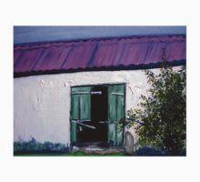 An old barn on a farm in Kradouw, Cape. Baby Tee