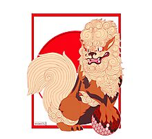 foo dog Arcanine Photographic Print