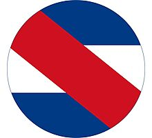 Roundel of the Uruguayan Air Force  Photographic Print