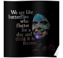 We Are Like Butterflies - Carl Sagan Poster
