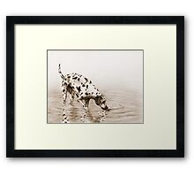 Follow your nose - sepia version Framed Print